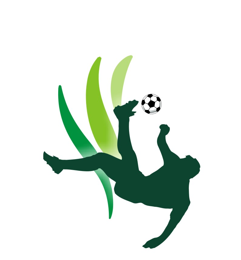 Pinnick restates NFF's support for Nigeria Pitch Awards as seventh event moves to November